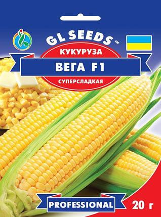 Кукуруза F1 Вега, пакет 20 грам - Семена кукурузы, фото 2