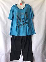 Женская котоновая пижама норма (р-ры 48-56) оптом со склада в Одессе.