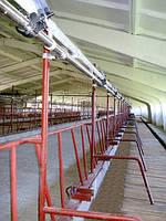 Молокопровод ДеЛаваль (Швеция) полнокомплектный на 100 гол, фото 1