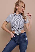 Женская блуза в офисном стиле  размеры  S M L (42,44,46), фото 3