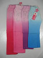 Брюки для девочек котоновые, размеры 110,110, арт. GD-318