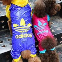 Брендовый дождевик для собак в стиле Adidog. Одежда для собак.