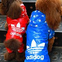 Брендовый дождевик для собак Adidog-Звезды. Одежда для собак.