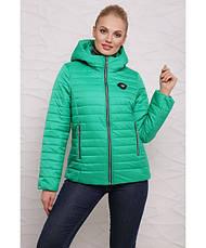 Куртка женская демисезонная 093,  42-54р., фото 2