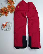 Лыжные штаны, фото 2