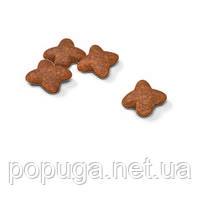 Royal Canin Mini Adult корм для собак, 4 кг, фото 2
