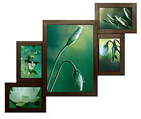 Рамки для 5 фото (дерево) 62*50 см (коллаж фото фоторамки ) ФР0005