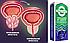 Эффективный комплекс Power Prost для лечения простатита, фото 4