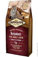 Carnilove Cat Reindeer 6кг - корм  для активных кошек с мясом северного оленя
