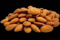 Косточка абрикоса - от 100 кг
