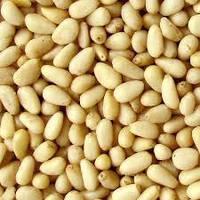 Кедровый орех - от 1 кг