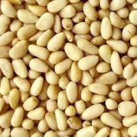 Кедровый орех - от 10 кг