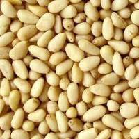 Кедровый орех - от 100 кг