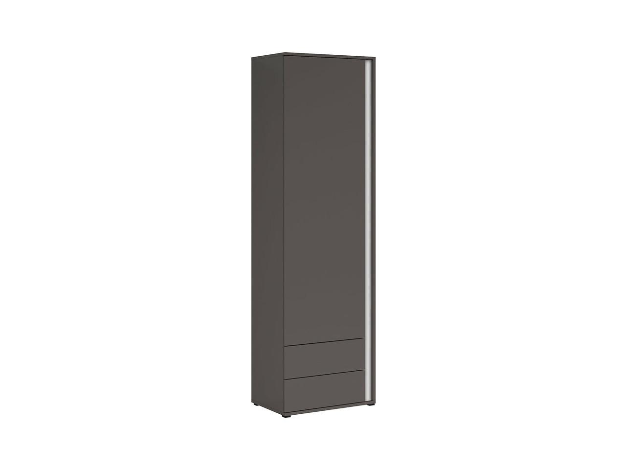 Книжный шкаф Graphic S343-REG1D2SL/C-SZW (BRW)