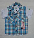 Летний комплект для мальчика футболка-рубашка и шорты (Petito Club, Турция), фото 2
