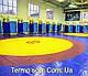 Покрытие (покрышка) ПВХ для борцовских и гимнастических матов в спортзалах трехцветная., фото 6