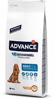 Сухой корм для собак Advance Dog Medium Adult 18 кг. для взрослых собак средних пород, курица и рис