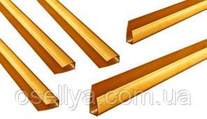 Профіль ПВХ стартовий дyб золотий 8мм, L=3м