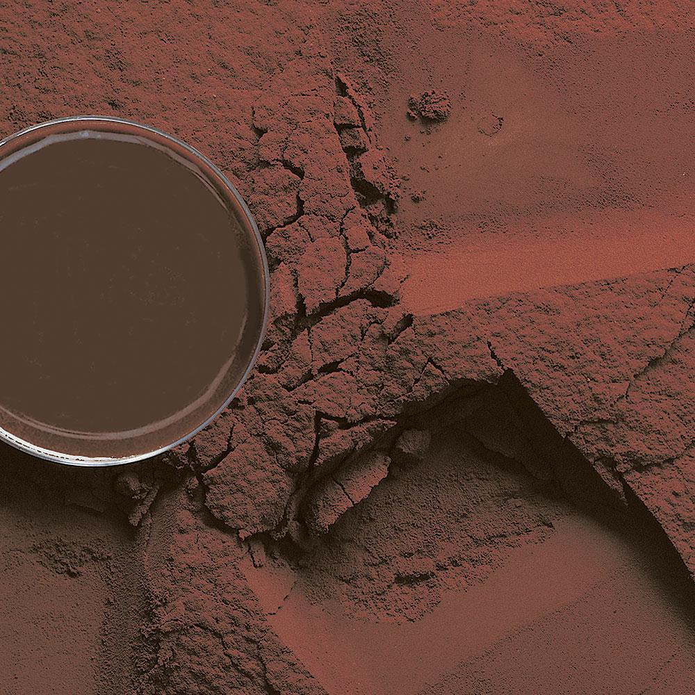 "Какао порошок D102DRM 10/12% ""Barry Callebaut"" 1 кг"