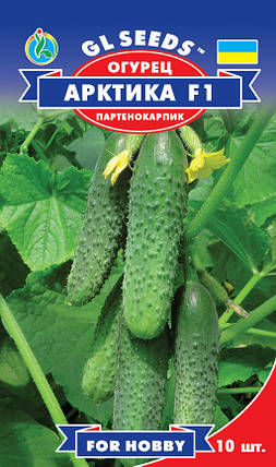 Огурец Арктика F1 партенокарпик, пакет 10 семян - Семена огурцов, фото 2