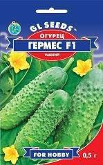Огурец Гермес F1, пакет 0,5г - Семена огурцов, фото 2