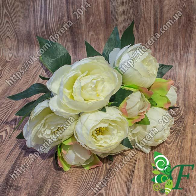 Букет Пионов натуральных_белые