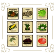 Семена овощных культур мини-упаковка