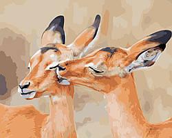 Художественный творческий набор, картина по номерам Олени, 50x40 см, «Art Story» (AS0420)