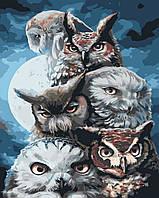 Художественный творческий набор, картина по номерам Ночные охотники, 40x50 см, «Art Story» (AS0399)