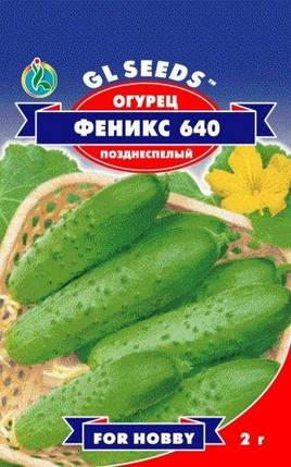 Огурец Феникс-640, пакет 1г - Семена огурцов, фото 2