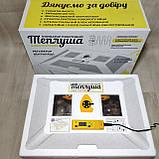Автоматический ламповый инкубатор Теплуша 72 NEW 2018 с влагомером, фото 2