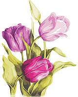 Художественный творческий набор, картина по номерам Нежные тюльпаны, 40x50 см, «Art Story» (AS0329), фото 1