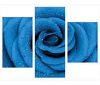 """Модульные картины для дома из 3-х частей """"Синяя роза"""""""