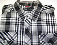 Рубашка SOUTH POLE (XL/43-44)