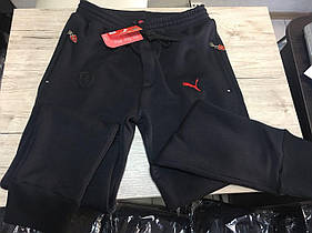 Мужские Спортивные Штаны Puma Ferrari. Мужская одежда. Реплика