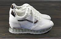 Женские кроссовки Lonza FLM810-1 WH 36 23 см, фото 1