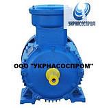 Электродвигатель АИМ80B6 1,1 кВт 1000 об/мин взрывозащищенный, фото 3