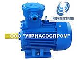 Электродвигатель АИМ132S6 5,5 кВт 1000 об/мин взрывозащищенный, фото 5