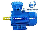 Электродвигатель АИМ250M2 90 кВт 3000 об/мин взрывозащищенный, фото 5