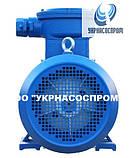 Электродвигатель АИМ100S2 4 кВт 3000 об/мин взрывозащищенный, фото 4