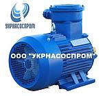 Электродвигатель АИМ132S6 5,5 кВт 1000 об/мин взрывозащищенный, фото 2