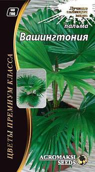 """Семена пальмы """"Вашингтония"""" 5 сем"""
