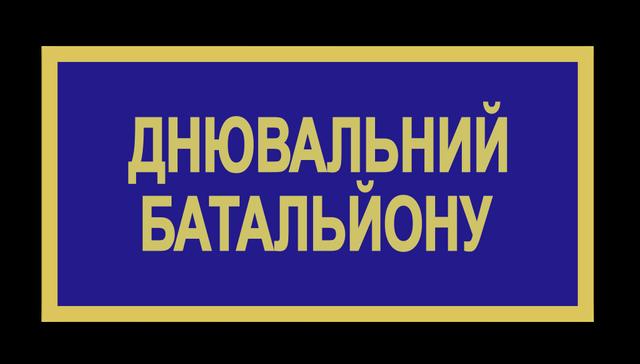 Бейдж ЗСУ днювальний батальйону