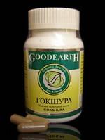 Гокшура №60 - средство для почек, Goodcare Pharma PVT. LTD.