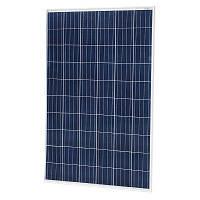 Солнечная батарея 335 Вт поли Risen, RSM72-6-335P