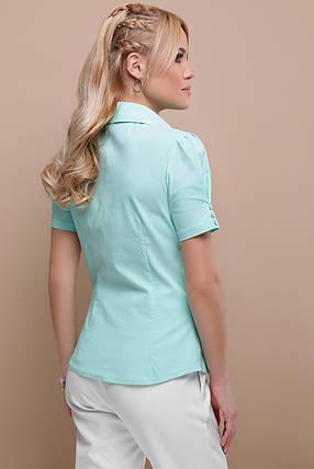 Легкая классическая блуза голубая 42-48, фото 2