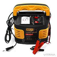 Зарядное устройство для авто 12А, 6-12В, до 250Ah (стрелочный индикатор) | СИЛА 900206