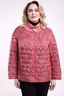 Куртка коралова з принтом, з 48-60 розмір