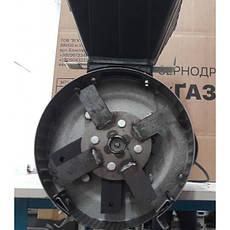 Зернодробилка ГАЗДА М-80 молотковая (зерно + початки кукурузы), 2,5 кВт, фото 2