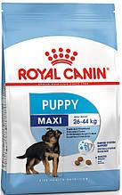 Сухой корм Royal Canin (Роял Канин) MAXI PUPPY для щенков крупных пород до 15 месяцев, 4 кг